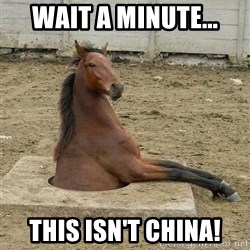 Hole Horse - Wait a minute... this isn't china!
