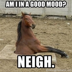 Hole Horse - am i in a good mood? neigh.