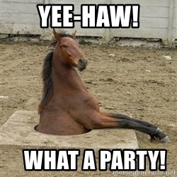 Hole Horse - yee-haw!    what a party!
