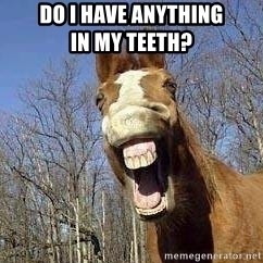 Horse - do i have anything                   in my teeth?