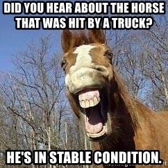 Horse - did you hear about the horse                                      that was hit by a truck? he's in stable condition.