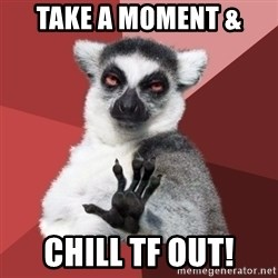 Chill Out Lemur - take a moment & chill tf out!