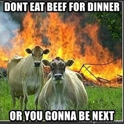 Evil Cows - Dont eat beef for dinner Or you gonna be next
