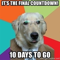 Business Dog - it's the final countdown! 10 days to go