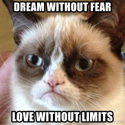 Angry Cat Meme - Dream without fear love without limits