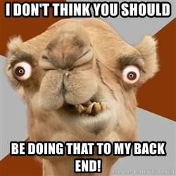Crazy Camel lol - i don't think you should  be doing that to my back end!