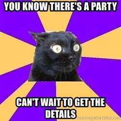 Anxiety Cat - you know there's a party can't wait to get the details