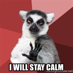 Chill Out Lemur - I will stay calm
