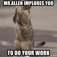 Begging Cat - mr.allen implores you  to do your work