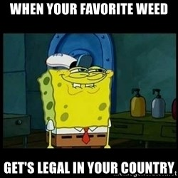 Don't you, Squidward? - When your favorite weed get's legal in your country