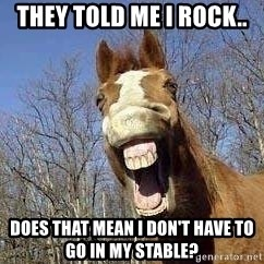 Horse - They told me i rock.. does that mean i don't have to go in my stable?