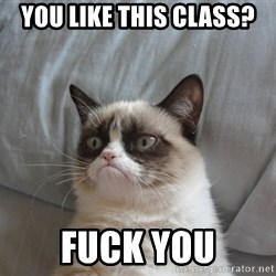 Grumpy cat good - You like this class? Fuck you