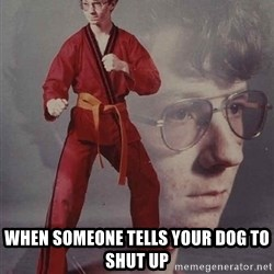 PTSD Karate Kyle - when someone tells your dog to shut up