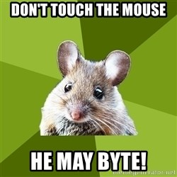 Prospective Museum Professional Mouse - Don't touch the mouse he may byte!