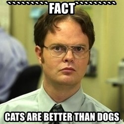 Dwight Schrute - `````````Fact````````` Cats are better than dogs