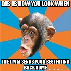 Stupid Monkey - DIS  is how you look WHen  The f M m sends your BESTfreind back HOME
