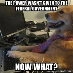 I have no idea what I'm doing - Dog with Tie - the power wasn't given to the federal government Now what?