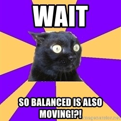 Anxiety Cat - Wait So balanced is also moving!?!