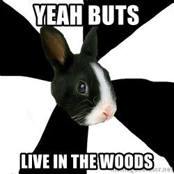 Roleplaying Rabbit - yeah buts  live in the woods
