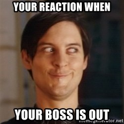 Peter Parker Spider Man - YOUR REACTION WHEN YOUR BOSS IS OUT