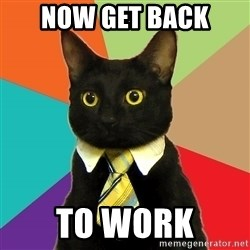 Business Cat - NOW GET BACK TO WORK