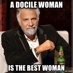 The Most Interesting Man In The World - A docile woman is the best woman