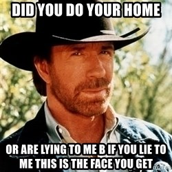 Brutal Chuck Norris - DiD you do your home  Or are lying tO me b if you liE To me this is the face you get