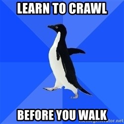 Socially Awkward Penguin - learn to crawl  before you walk