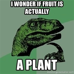 Philosoraptor - I wonder if fruit is actually a plant