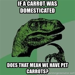 Philosoraptor - if a carrot was domesticated does that mean we have pet carrots?