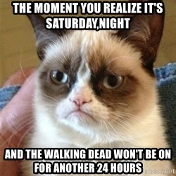 Grumpy Cat  - The moment you realize it's saturday,Night  And the walking dead won't be on for another 24 hours