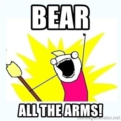 All the things - bear  all the arms!