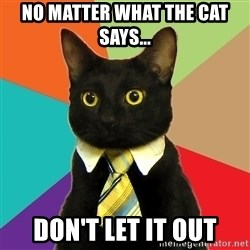 Business Cat - No Matter what the cat says... Don't let it out
