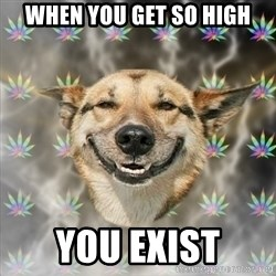 Stoner Dog - When you get so high You exist