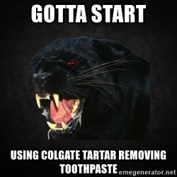 Roleplay Panther - gotta start  using colgate tartar removing toothpaste