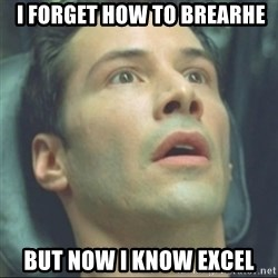 i know kung fu - i forget how to brearhe But now i know excel