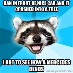 Lame Pun Coon - Ran in front of nice car and it crashed into a tree I got to see how a mercedes bends