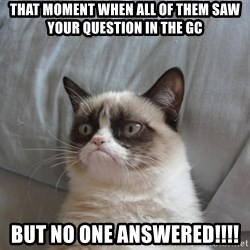 Grumpy cat 5 - that moment when all of them saw your question in the GC BUT no one answered!!!!