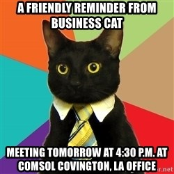 Business Cat - A friendly reminder from Business cat Meeting tomorrow at 4:30 p.m. at Comsol Covington, La office