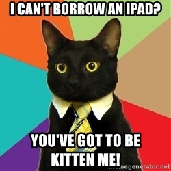 Business Cat - I can't borrow an iPad? You've got to be                            Kitten Me!