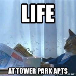 newspaper cat realization - LIFE AT TOWER pARK aPTS