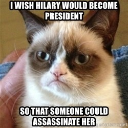 Grumpy Cat  - I wish hilary would become president So that someone could assassinate her