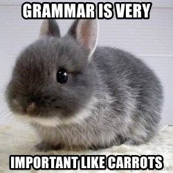 ADHD Bunny - grammar is very  important like carrots