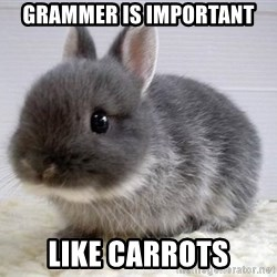 ADHD Bunny - grammer is important  like carrots
