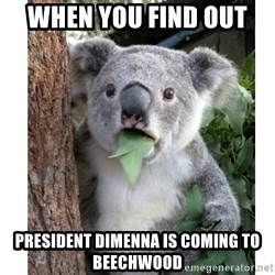 surprised koala - When you find out  President Dimenna is coming to beechwood