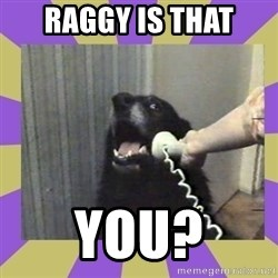 Yes, this is dog! - raggy is that you?