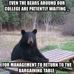 Patient Bear - Even the bears around our college are patiently waiting ... for management to return to the bargaining table.