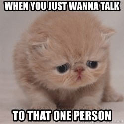 Super Sad Cat - When you just wanna talk  To that one person