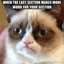 Angry Cat Meme - When the last section makes more work for your section