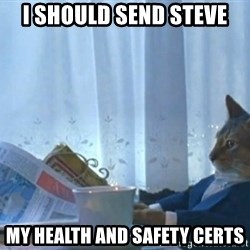 newspaper cat realization - I Should send steve my health and SAFETY certs